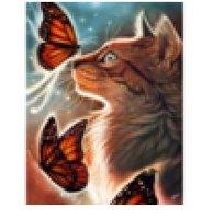 Diamond-Painting Poes met vlinders 40x50 cm