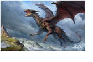 Diamond-Painting Draken 50x60 cm