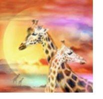 Diamond-Painting Giraffen 40x50 cm