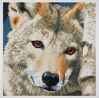 Lanarte Diamond painting kit Wolf