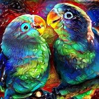 Diamond-Painting Papagaaien 40x50 cm
