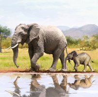 Crystal Card Kit | Diamond painting Elephants