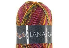 Lana Grossa Meilenweit Santa Fe kleur 6508