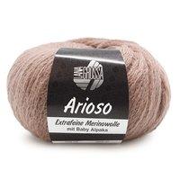 Lana Grossa Arioso kleur 19