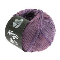 Lana Grossa Allegro Unito kleur 106
