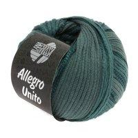 Lana Grossa Allegro Unito kleur 108
