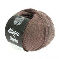 Lana Grossa Allegro Unito kleur 107