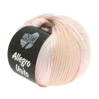 Lana Grossa Allegro Unito kleur 102