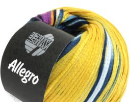 Lana Grossa Allegro kleur 022