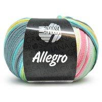 Lana Grossa Allegro kleur 020