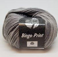 Lana Grossa Bingo Print Kleur 608