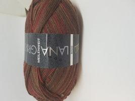 Lana Grossa Meilenweit Bosco kleur 3514