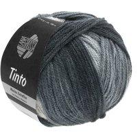 Lana Grossa Tinto kleur 011