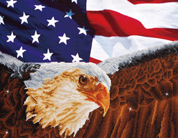 Diamond Dotz Bald Eagle & Flag