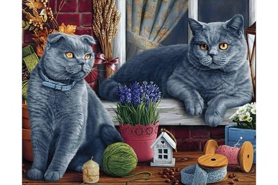 Wizardi Diamond Painting Kit British Shorthair Cats WD2483