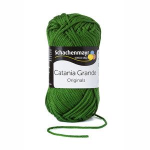Schachenmayr Catania Grande kleur 3392