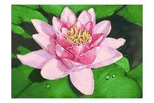 Wizardi Diamond Painting Kit Lotus on the Lake WD032