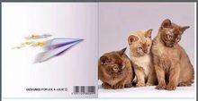 Jul And Julie Kit | Diamond painting Drie Kittens