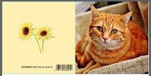 Jul And Julie Kit | Diamond painting Kat Oranje