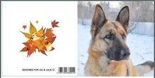 Jul And Julie Kit | Diamond painting Hond