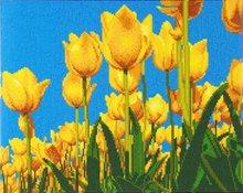 Crystal Art Kit | Diamond Painting Tulips