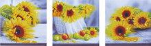 Diamond Dotz Sunflower Days